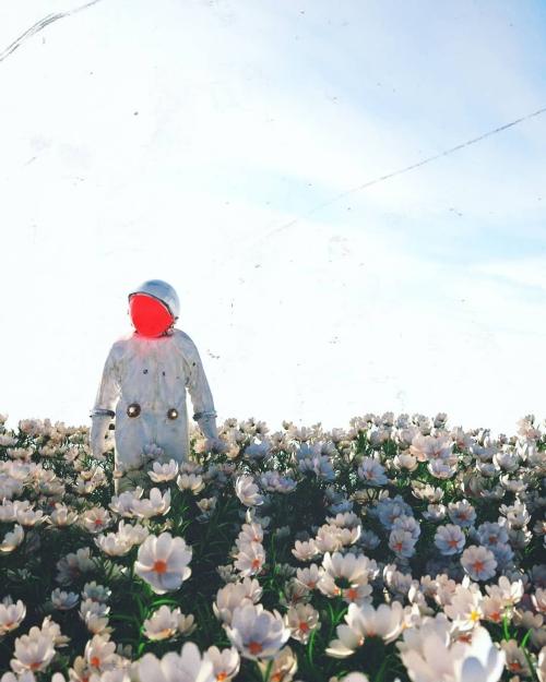 FLOWERTOUCHING SPACEMANSADNESS